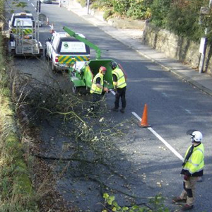 1. Commercial Aboriculture - Roadside clearance of overhanging and dangerous trees