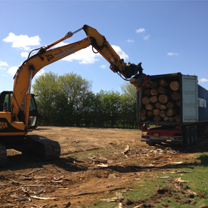 10. Biomass Production and Management - Biomass Poplar Container Loading