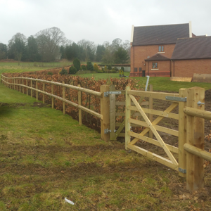 2. Domestic Fencing - Hedge Relocation, Installation of Post and Rail Fencing and Estate Gates at Country Park in Northop