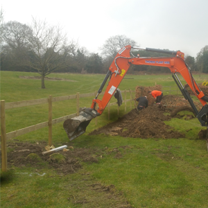 3. Domestic Landscaping - Replanting hedge and installation of fencing