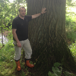 8. Consultancy and Advice - Tree Surveys and Consultancy