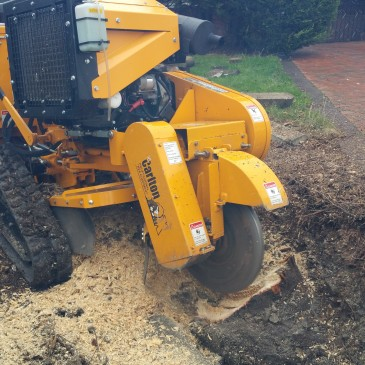 Fence Installation and Stump Grinding