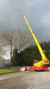 Crane set up to assist with Tree Felling