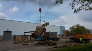 The stem is lowered into the clearing area